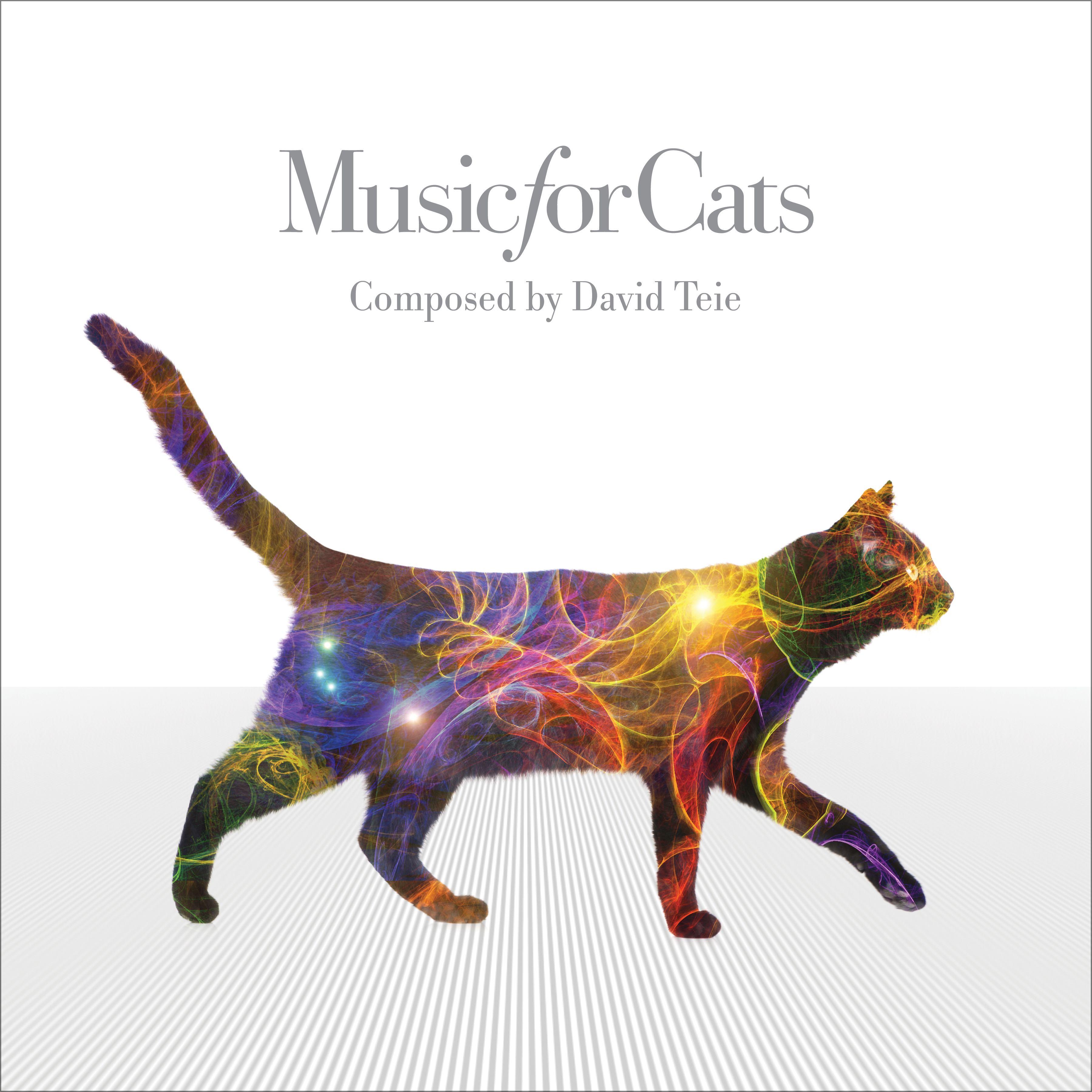 musicforcats-artwork