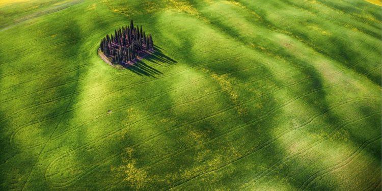 """© FOTO: MAURO PAGLIAI/ SKYPIXEL """"Zeleni talasi"""" – drugo mesto u kategoriji """"Entuzijaste – lepota"""""""