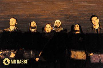 Mr. Rabbit/ Photo: Boris Jovanović
