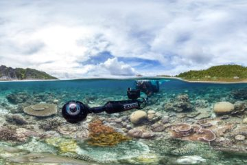 Chasing Coral/ Photo: imdb.com