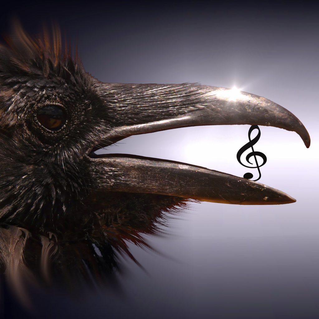 Muzika, ilustracija/Photo: Pixabay