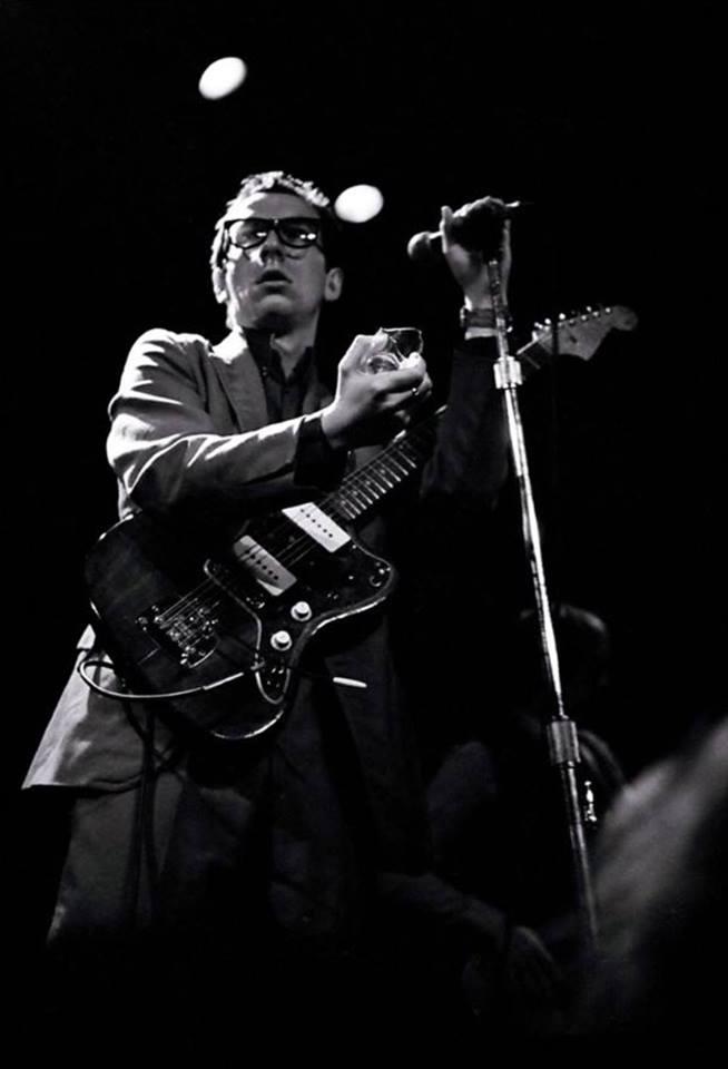 Elvis Kostelo/Photo: Promo