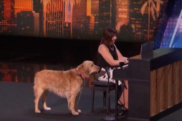 Oskar, pas koji peva/Photo: YouTube printscreen