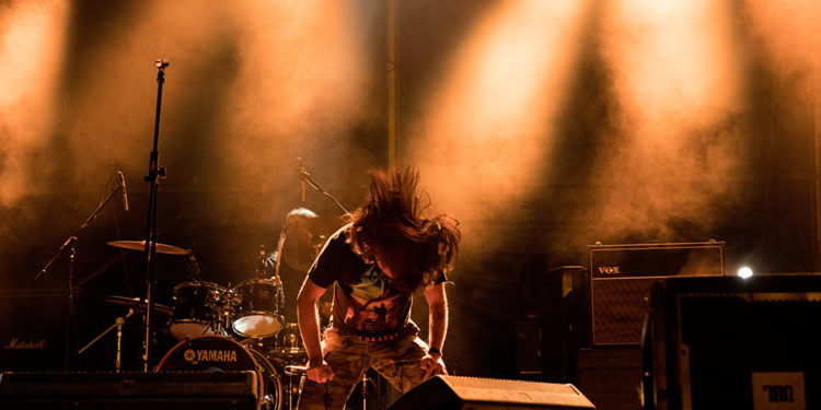Cornix/ Photo: AleX