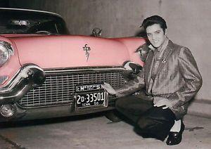 Elvis Prisli/Photo: printscreen