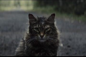 Pet Sematery/Photo: YouTube printscreen