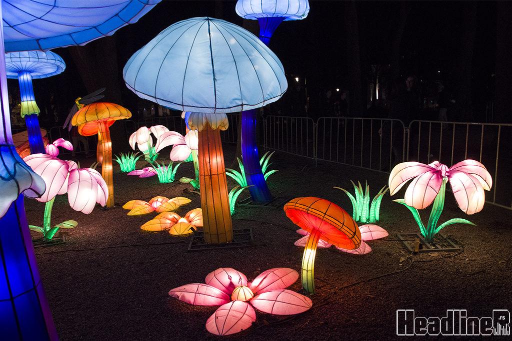 Kineski festival svetla/ Photo: AleX