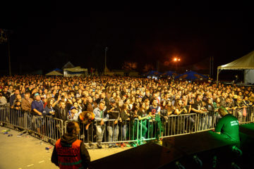 Gitarijada Vojvodine/ Photo: Promo (Gitarijada Vojvodine)