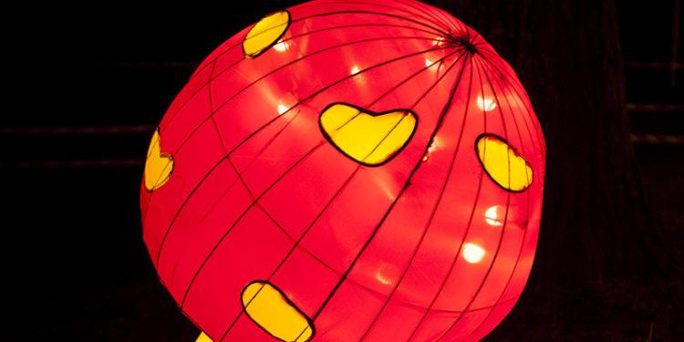 Kineski festival svetla/ Photo: Marina Pešić