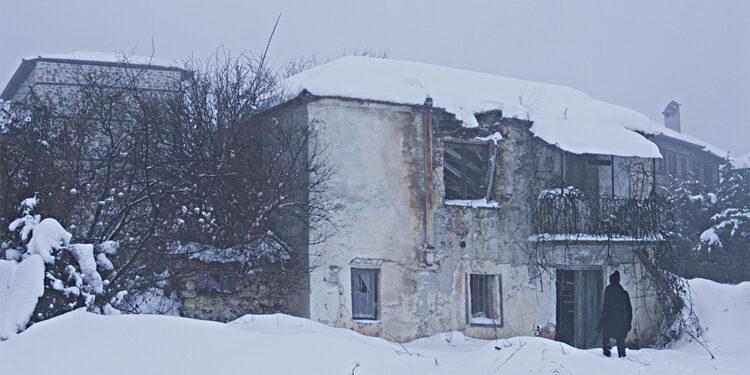 Domovina/ Photo: Promo (FAF)