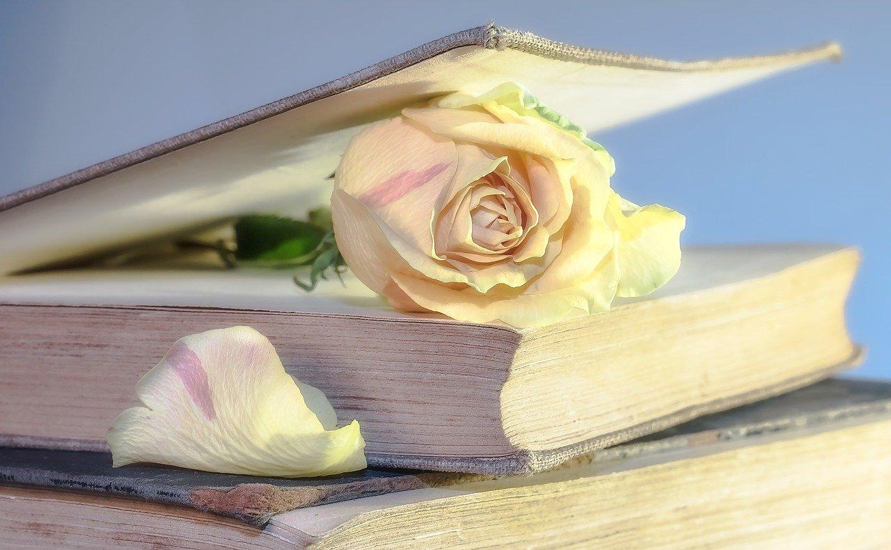 Knjiga/ Photo: pixabay.com