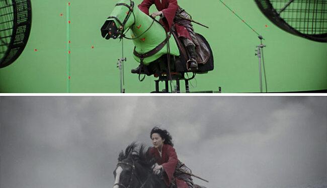 Mulan/ Photo: boredpanda.com