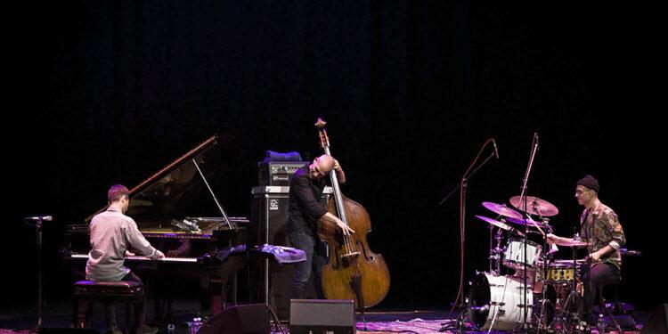 Avišaj Koen Trio/ Photo: AleX