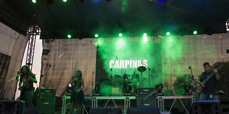 Carpinus (Wind Rock Up)/ Photo: AleX